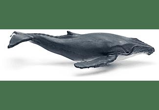 Tonies Figur: WAS IST WAS - Wale und Delfine/Geheimnisse der Tiefsee