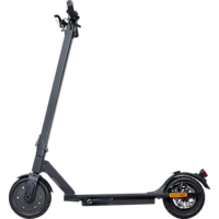 CITY BLITZ CB064SZ-X MOOVER X E-Scooter (10 Zoll, Schwarz)