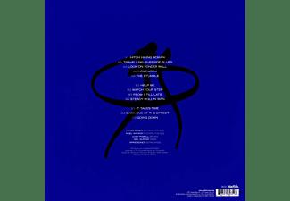 Peter Green - Splinter Group  - (Vinyl)