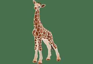 SCHLEICH Giraffenbaby Spielfigur Mehrfarbig