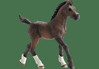 SCHLEICH HC Araber Fohlen Spielfigur Mehrfarbig