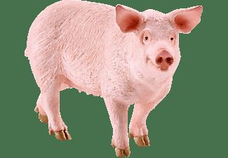 SCHLEICH Schwein Spielfigur Mehrfarbig