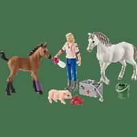 SCHLEICH Arztbesuch bei Stute und Fohlen Spielfigur, Mehrfarbig