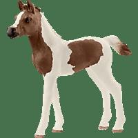 SCHLEICH HC Araberpinto Fohlen Spielfigur, Mehrfarbig