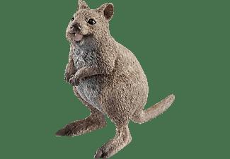 SCHLEICH Quokka Spielfigur Mehrfarbig