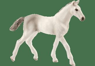 SCHLEICH HC Holsteiner Fohlen Spielfigur Mehrfarbig