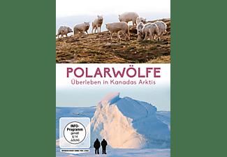 Polarwölfe - Überleben in Kanadas Arktis DVD