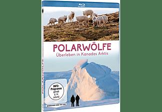 Polarwölfe - Überleben in Kanadas Arktis Blu-ray