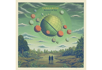 Tangarine - BECAUSE OF YOU (+CD)  - (Vinyl)