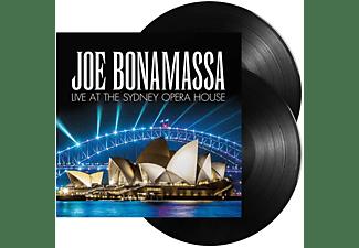 Joe Bonamassa - LIVE AT THE -BONUS TR-  - (Vinyl)