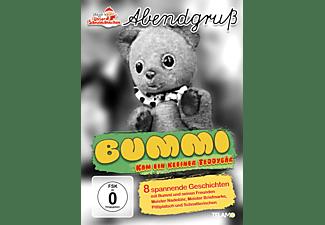 Bummi-Kam ein kleiner Teddybär DVD