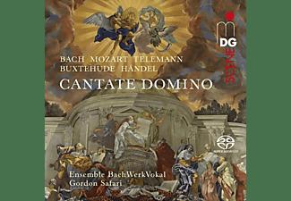 Ensemble Bachwerkvokal - Cantate Domino  - (SACD)