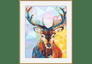 SCHIPPER MNZ - Polygon-Art Hirsch Malset Mehrfarbig