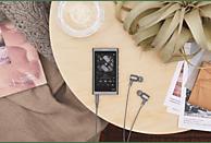 SONY Walkman NW-A55L Mp3-Player (16 GB, Schwarz)