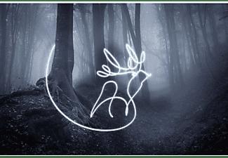 Harry Potter Lichtmaler Zauberstab Harry