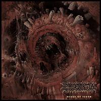 Hyperdontia - Nexus Of Teeth [CD]