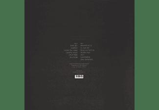 Takayuki Shiraishi - Missing Link  - (Vinyl)
