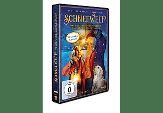 Schneewelt – Das Geheimnis vom wirklich wahren Weihnachtsmann DVD