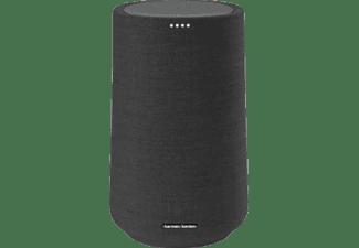 HARMAN KARDON Citation 100 MKII Lautsprecher App-steuerbar, Bluetooth, Schwarz