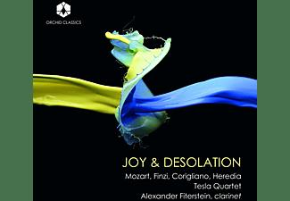 Alexander Fiterstein, Tesla Quartet - Joy And Desolation/Klarinettenqu  - (CD)